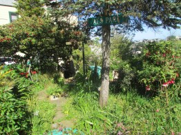 """The entrance to """"Al's Park""""--more of an unpavably steep street right-of-way that the neighbors maintain and garden"""