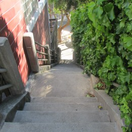 Almost home--Ord Street steps