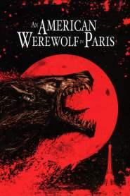 Amerykański Wilkołak w Paryżu online cda pl