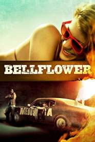 Bellflower online cda pl