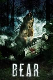 Niedźwiedź online cda pl