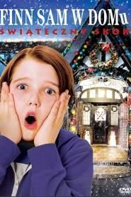 Finn sam w domu: Świąteczny skok online cda pl