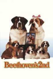 Beethoven 2 online cda pl