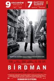 Birdman online cda pl