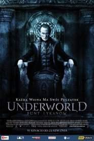Underworld: Bunt Lykanów online cda pl