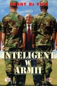 Inteligent w armii online cda pl
