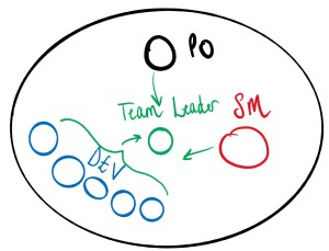 A diagram of the team all reporting into the Team Leader node