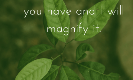Be Magnified!