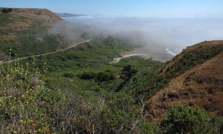 sea ranch, road trip,sea ranch rentals road trip,sea ranch rentals