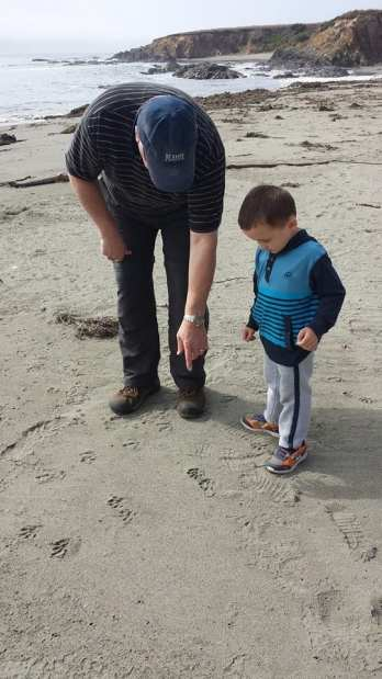 baby travel tips , tide pool, kid friendly Sea Ranch Abalone Bay oceanfront vacation rental