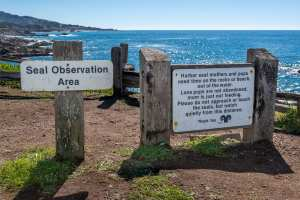 National public lands day,sea ranch tide pools, tide pools, sea ranch, abalone bay, vacation rental