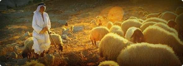 credidilidade-do-ministerio-pastoral