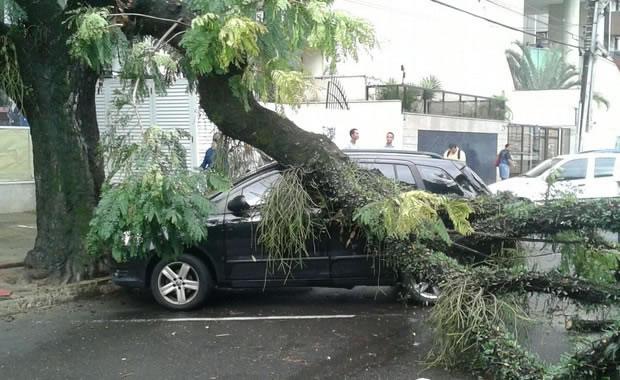 Chuvas no Espírito Santo: Asfalto cede e casa desaba após chuva na Serra - 3