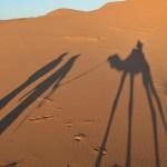 サハラ砂漠での一夜 in メルズーガ【モロッコ】