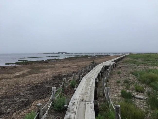 トドワラ(野付半島)、北海道