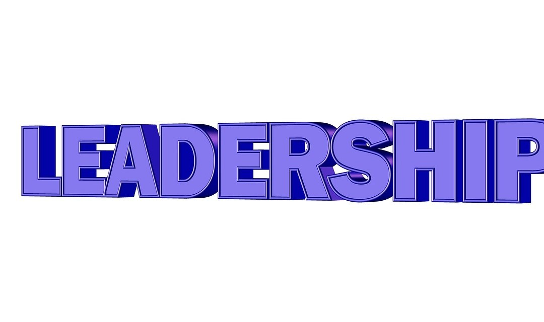 Leadership Skills – Do You Have Them?