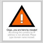 Example Error Page