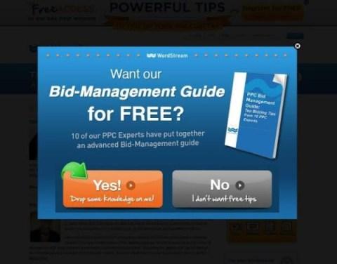 bidmanagementguide