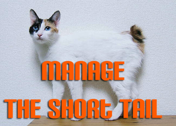 manage-the-short-tail