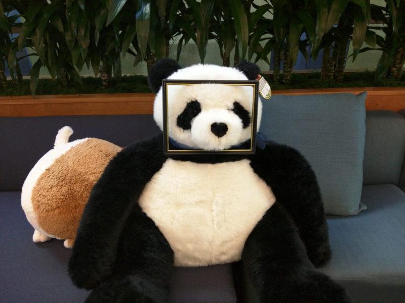 panda-frame