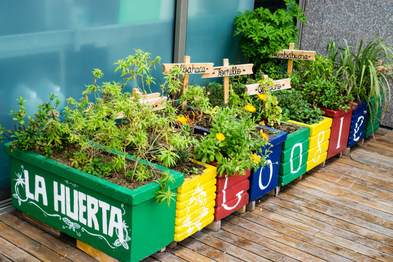 Google Colombia Office Garden