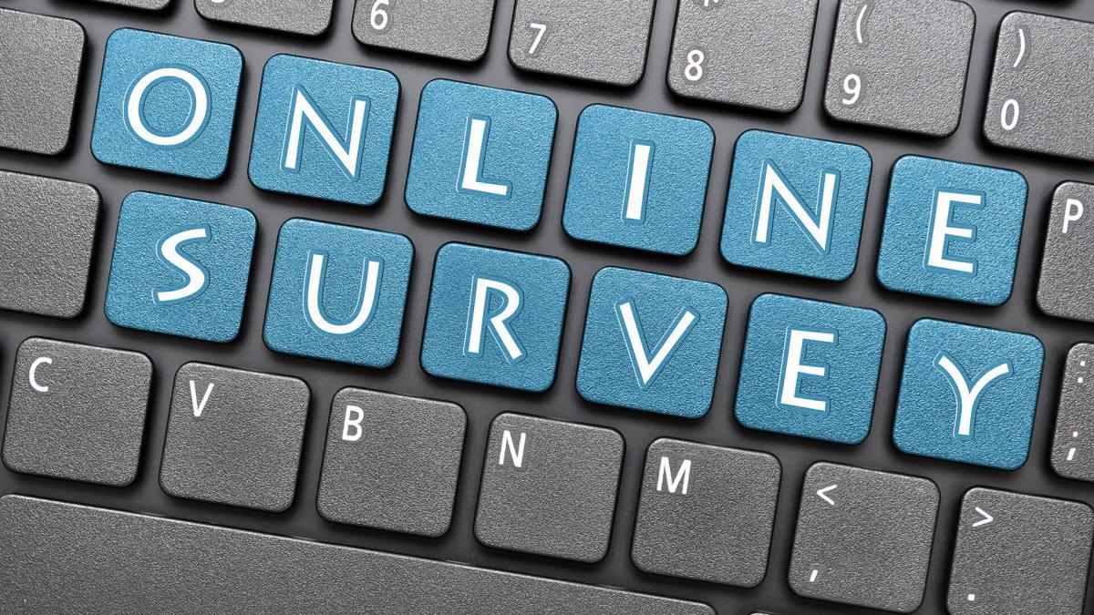 online survey ss 1920