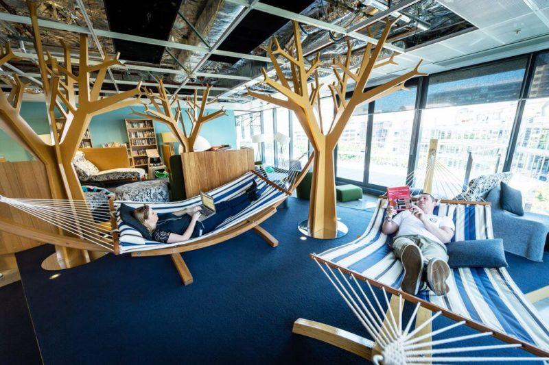 google-hammock