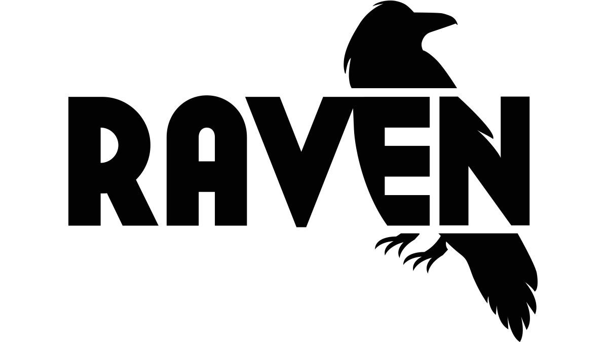 Raven Site Auditor