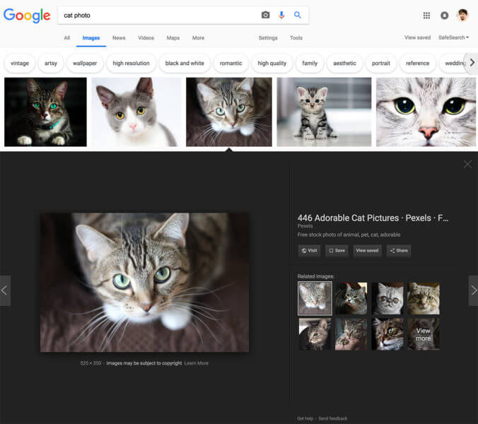 google-images-preview-now-1534851412-676x600 Users spot redesigned Google Image search results design