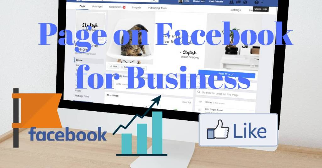 Page on facebook for business