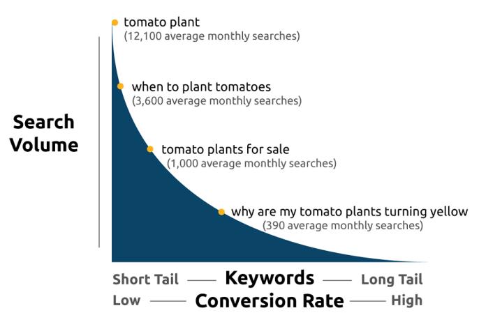 keywords conversion rates short and long tail