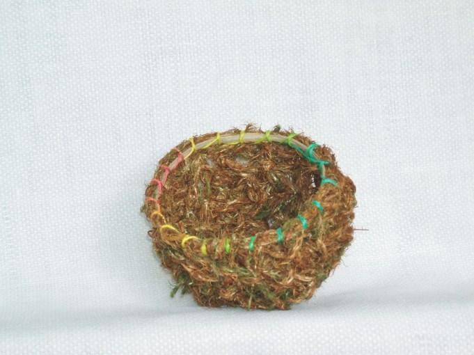 haircap moss 1