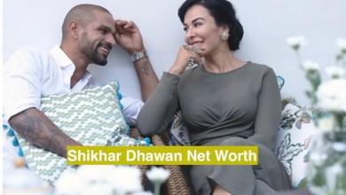 Shikhar Dhawan Net Worth