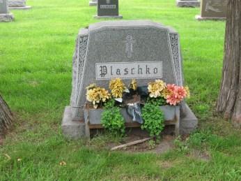 Plaschko plot