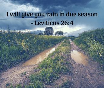 Rain in Due Season