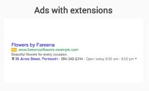 2-text-extensions-ads-format