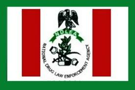NDLEA Shortlisted Candidates 2019 (PDF List)