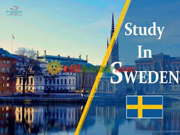 Apply For Swedish Institute Scholarships For Global Professionals (SISGP) 2020/2021