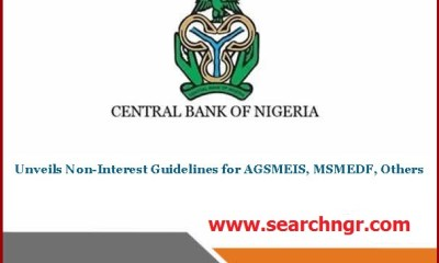 Apply for CBN Manara Loan 2021 - Application Portal (Non-Interest Loan)