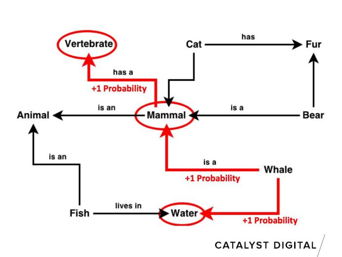 semantic whale example with connections highlights - node graph