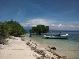 Menjangan Island Beach