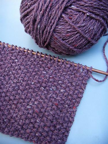 Seed Stitch (philistine made - Flickr)