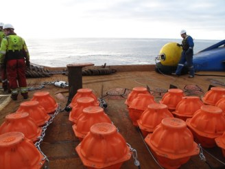 Nautilus Vitrovex Floats