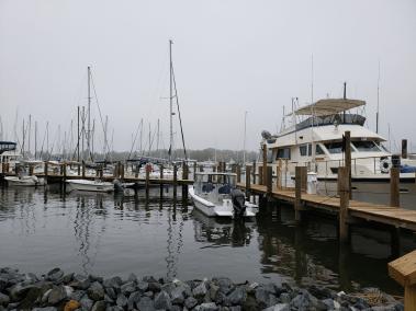 Annapolis Marina - Seashell Marina - Boat Slips for Rent