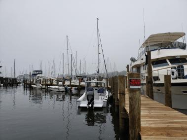 Annapolis Marina - Seashell Marina - Boat Slips