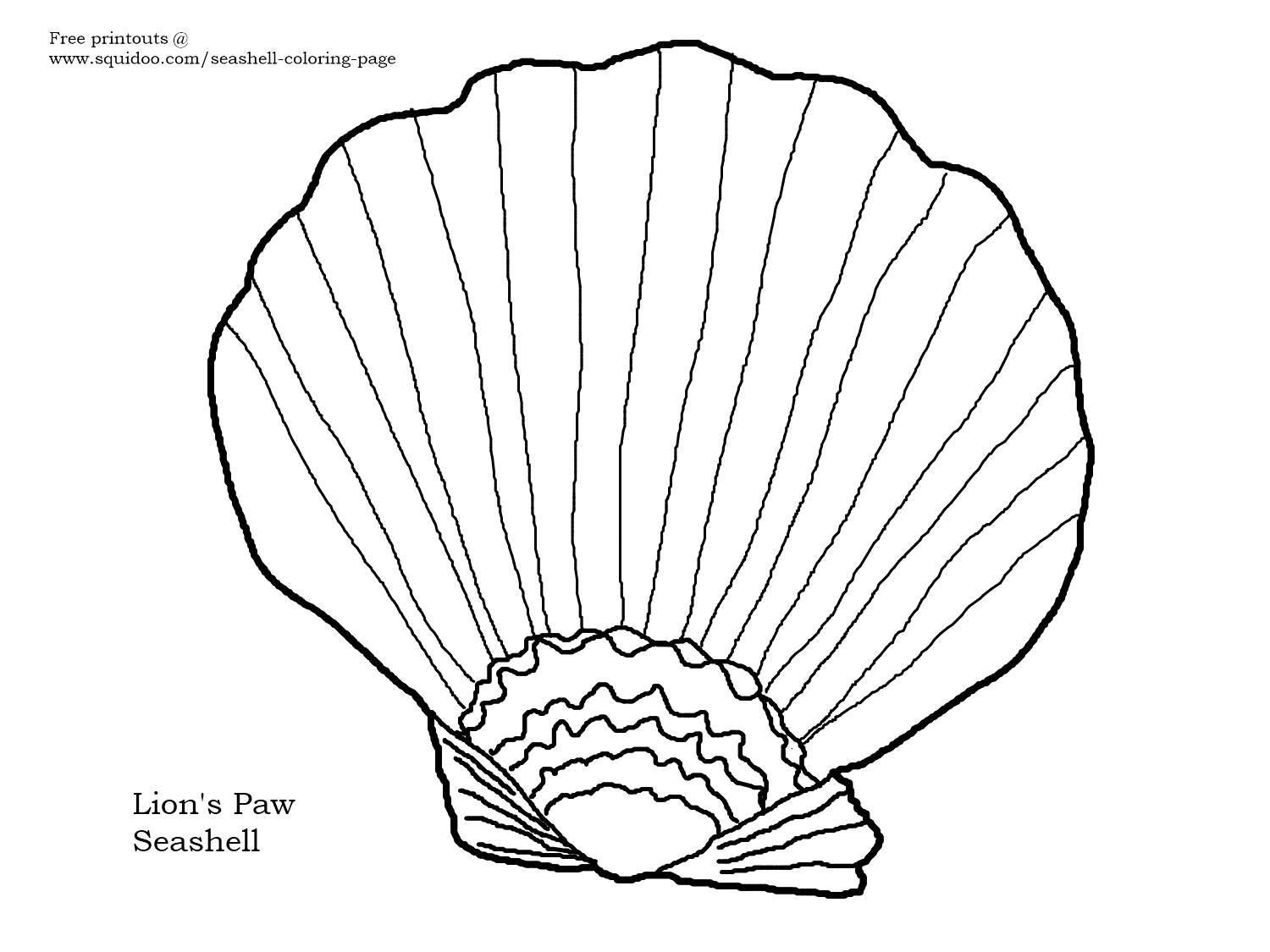 Lion's paw seashell coloring page