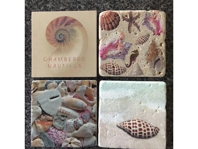 seashell photography stone coasters