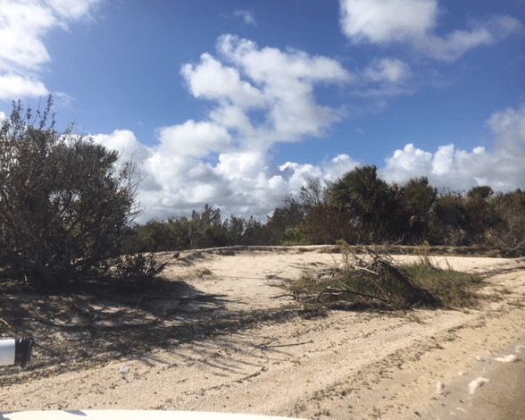 eroded shoreline
