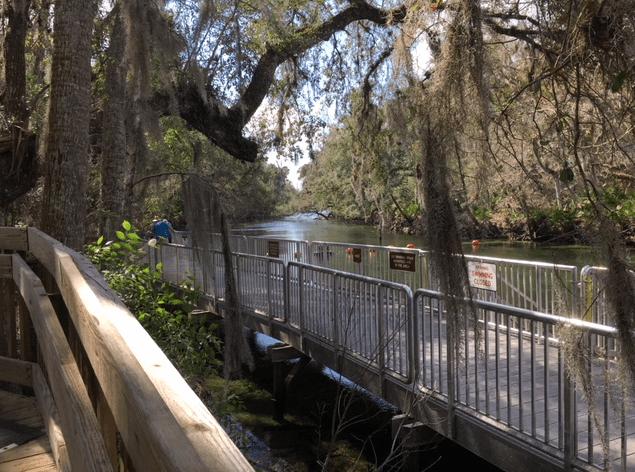 boardwalk at Blue Springs