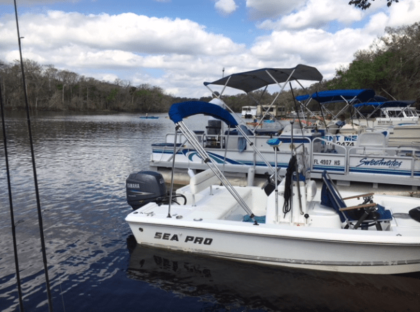boats docked at blue springs state park